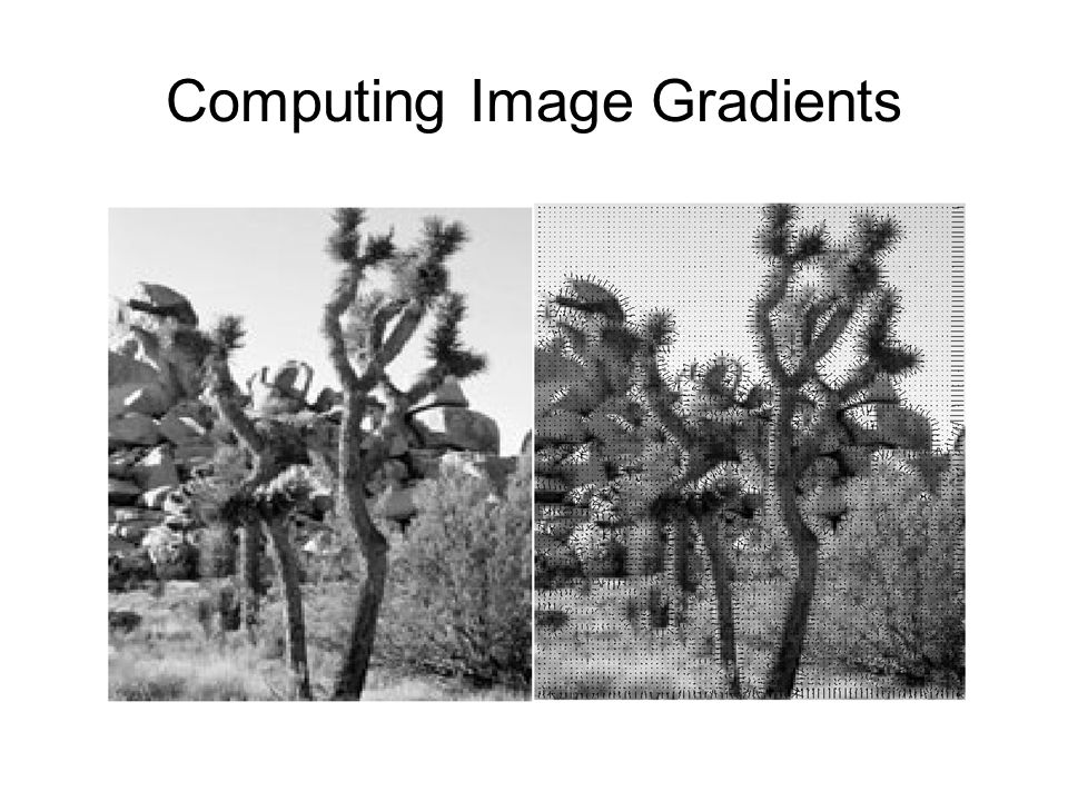 Computing Image Gradients