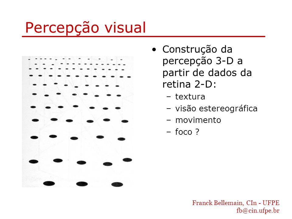 Percepção visual Construção da percepção 3-D a partir de dados da retina 2-D: textura. visão estereográfica.