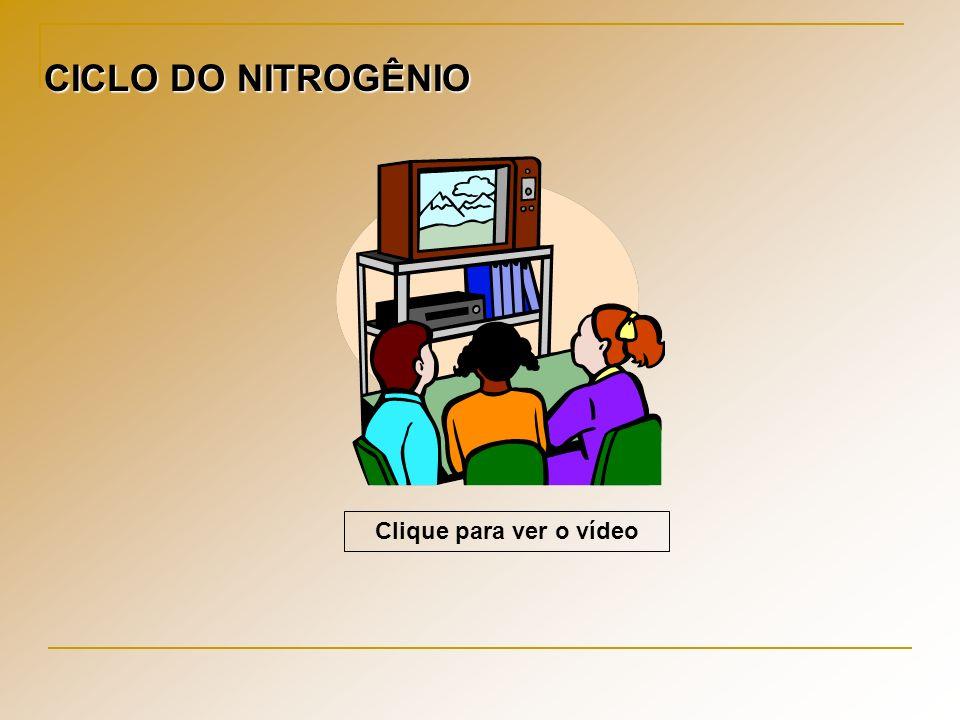 CICLO DO NITROGÊNIO Clique para ver o vídeo