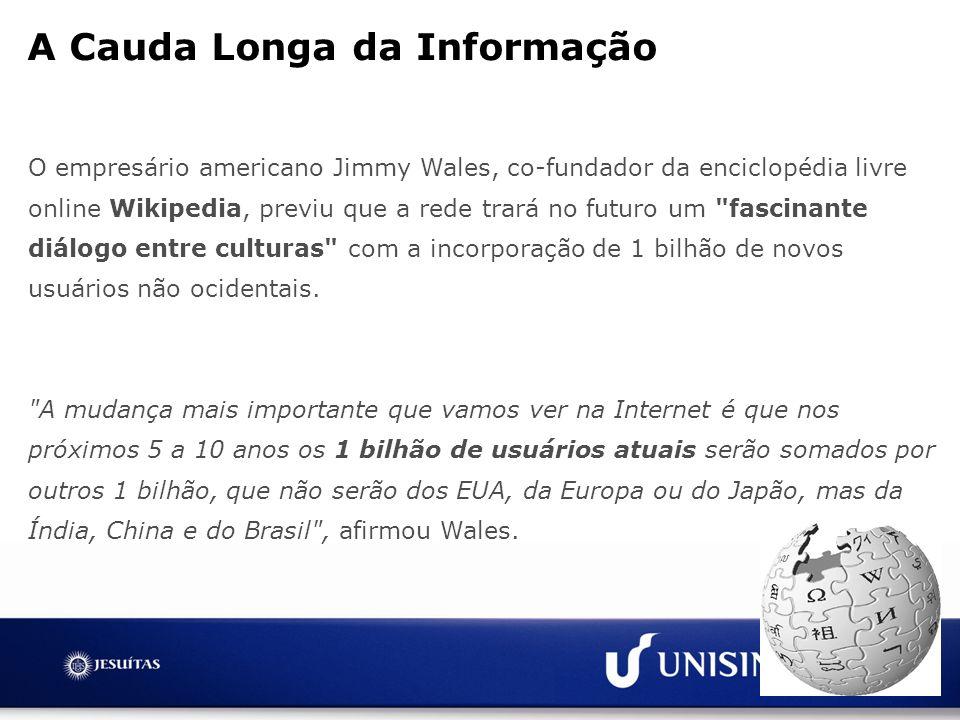 A Cauda Longa da Informação
