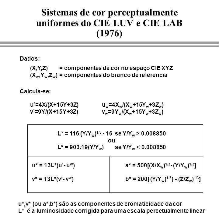 Sistemas de cor perceptualmente uniformes do CIE LUV e CIE LAB (1976)