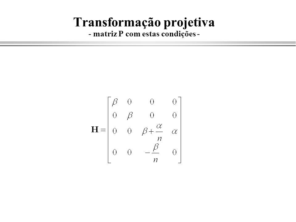 Transformação projetiva - matriz P com estas condições -