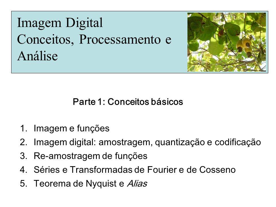 Imagem Digital Conceitos, Processamento e Análise