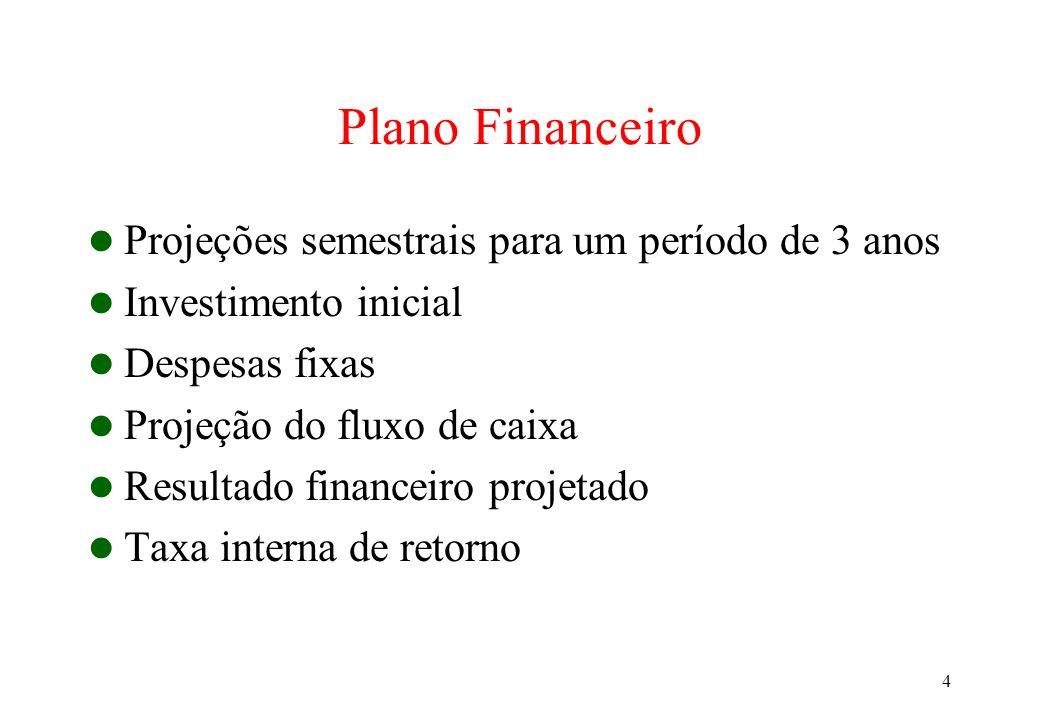 Plano Financeiro Projeções semestrais para um período de 3 anos
