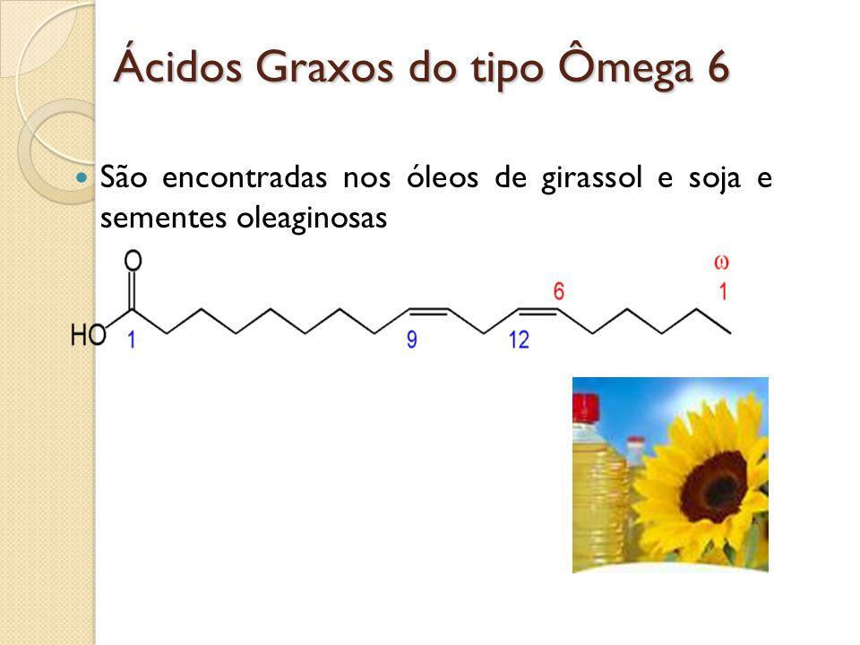 Ácidos Graxos do tipo Ômega 6