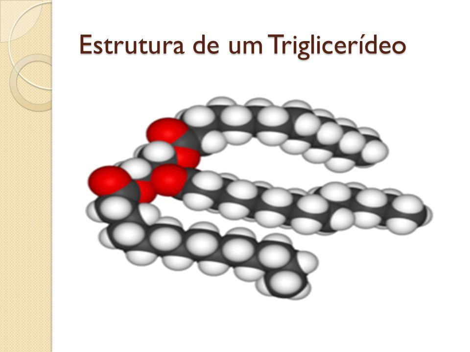 Estrutura de um Triglicerídeo