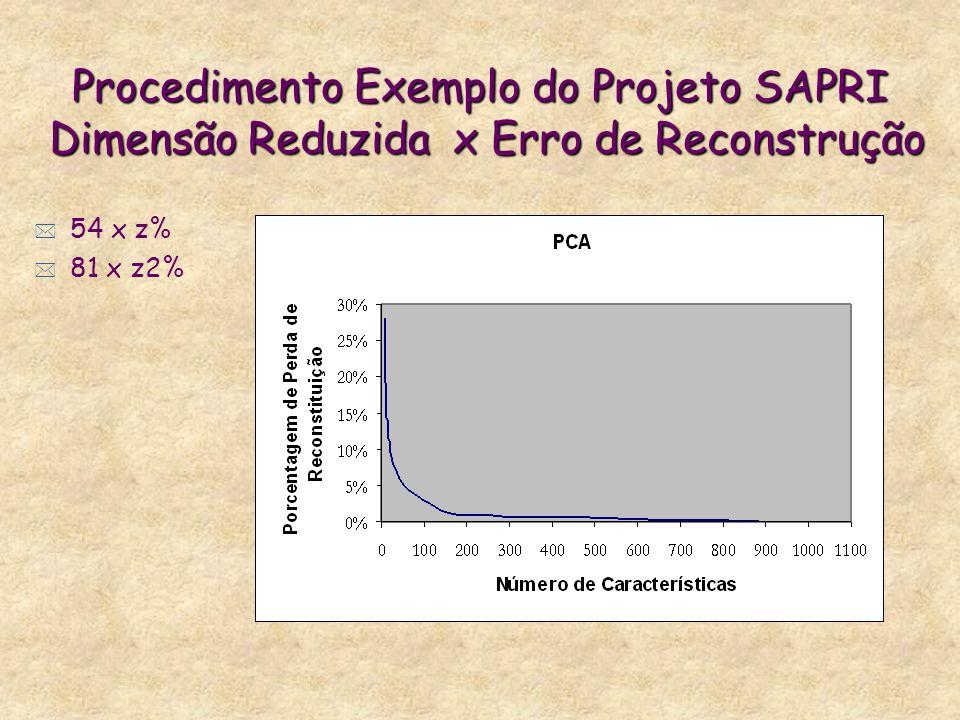 Procedimento Exemplo do Projeto SAPRI Dimensão Reduzida x Erro de Reconstrução