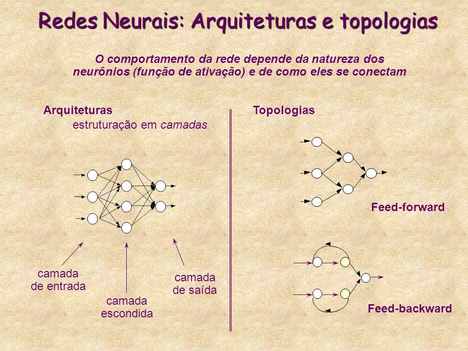 Redes Neurais: Arquiteturas e topologias