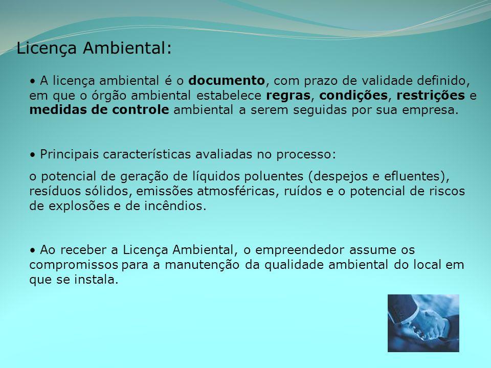 Licença Ambiental: