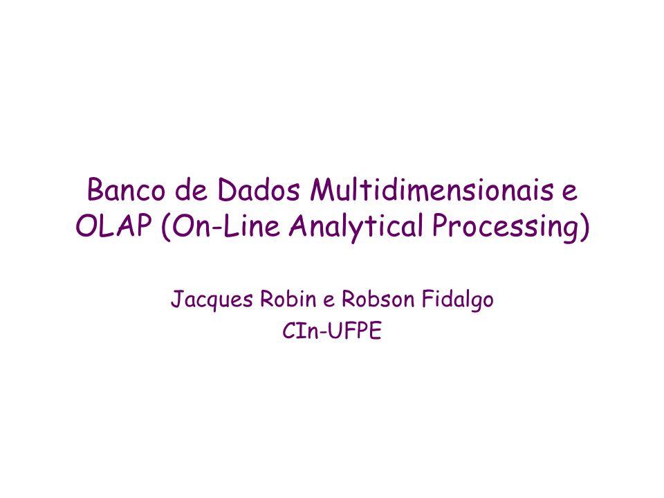 Jacques Robin e Robson Fidalgo CIn-UFPE