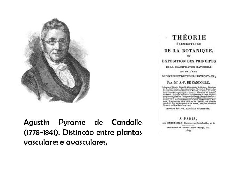 Agustin Pyrame de Candolle (1778-1841)