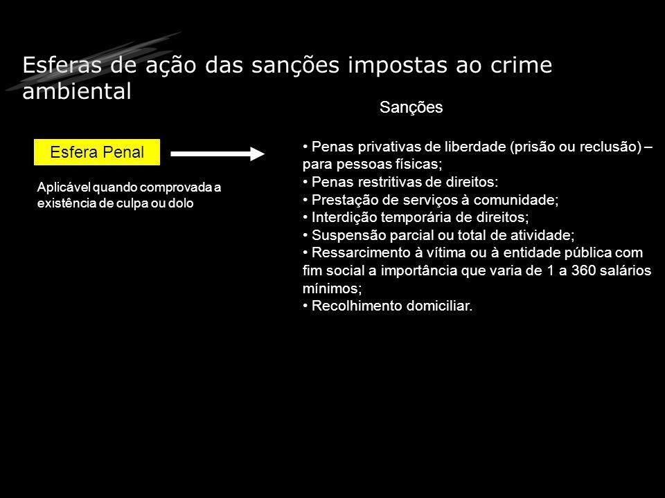 Esferas de ação das sanções impostas ao crime ambiental