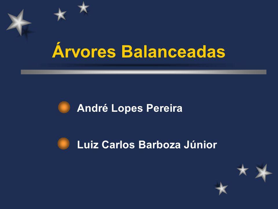 André Lopes Pereira Luiz Carlos Barboza Júnior