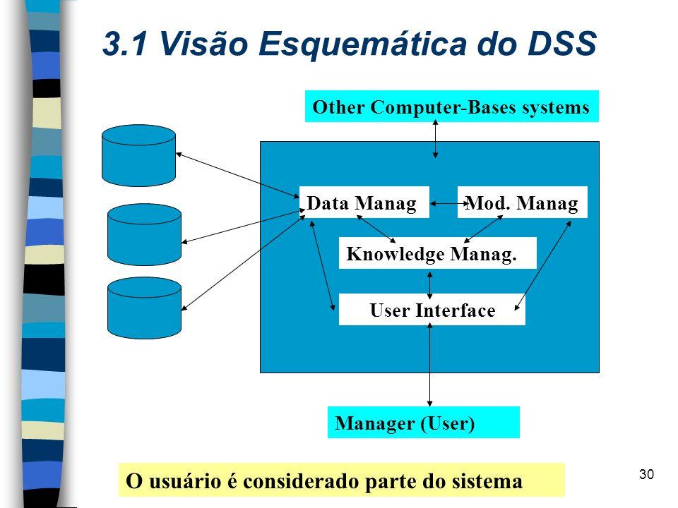 3.1 Visão Esquemática do DSS