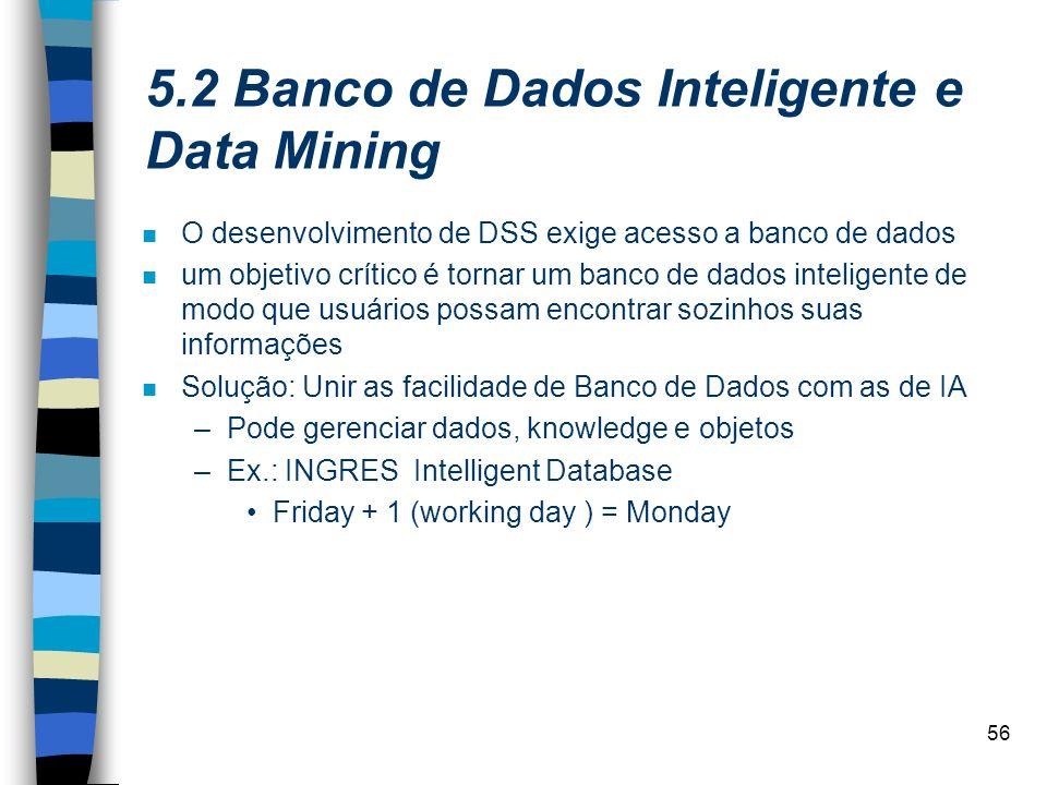 5.2 Banco de Dados Inteligente e Data Mining