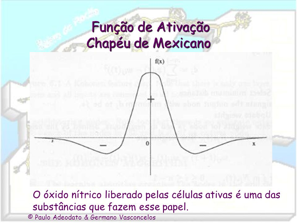 Função de Ativação Chapéu de Mexicano