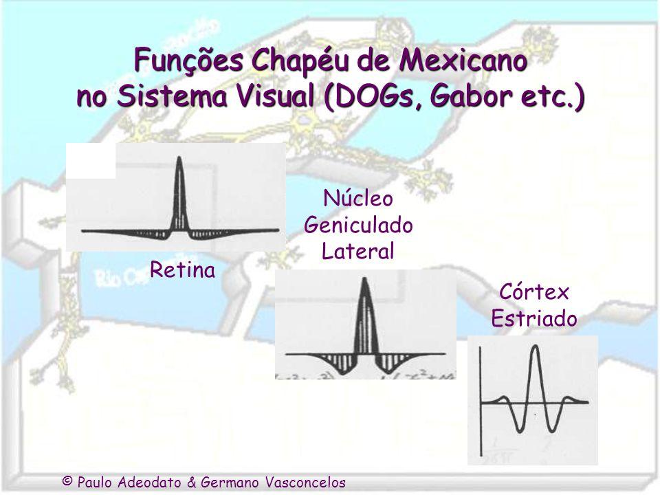 Funções Chapéu de Mexicano no Sistema Visual (DOGs, Gabor etc.)