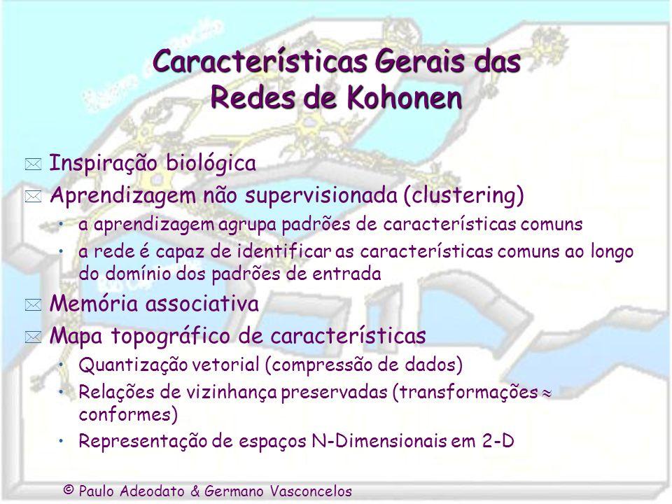 Características Gerais das Redes de Kohonen