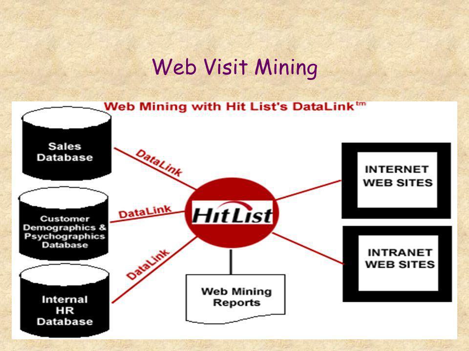 Web Visit Mining