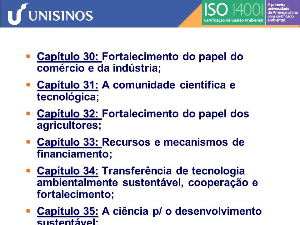 Capítulo 30: Fortalecimento do papel do comércio e da indústria;