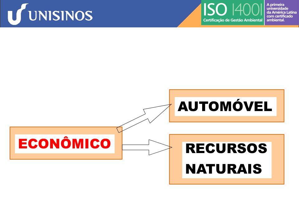 AUTOMÓVEL ECONÔMICO RECURSOS NATURAIS
