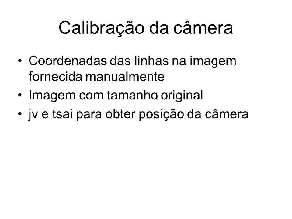 Calibração da câmera Coordenadas das linhas na imagem fornecida manualmente. Imagem com tamanho original.
