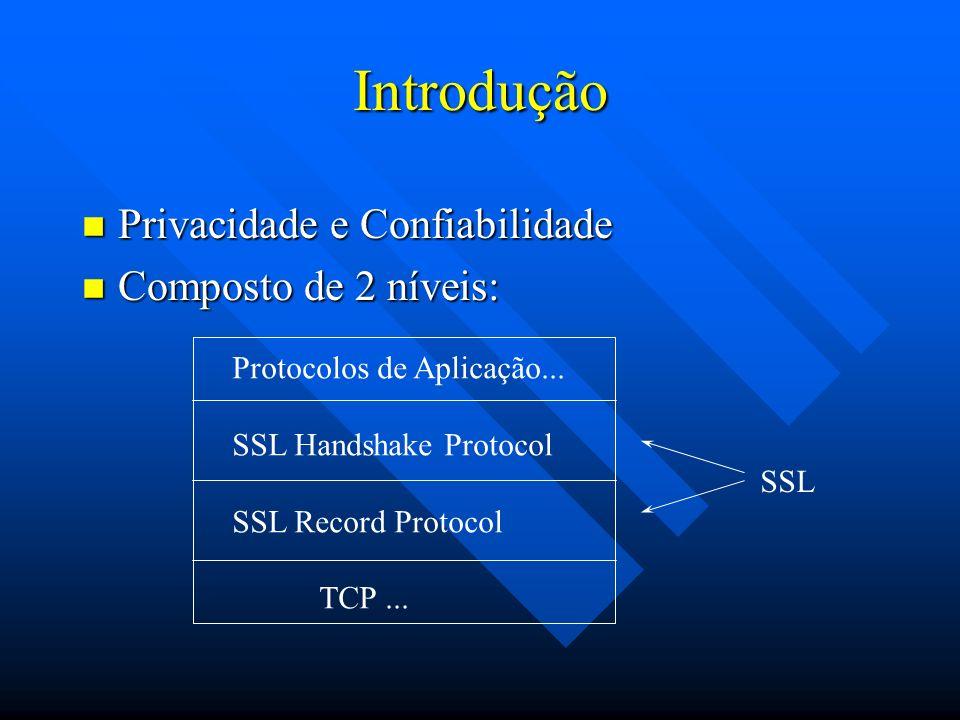 Introdução Privacidade e Confiabilidade Composto de 2 níveis: