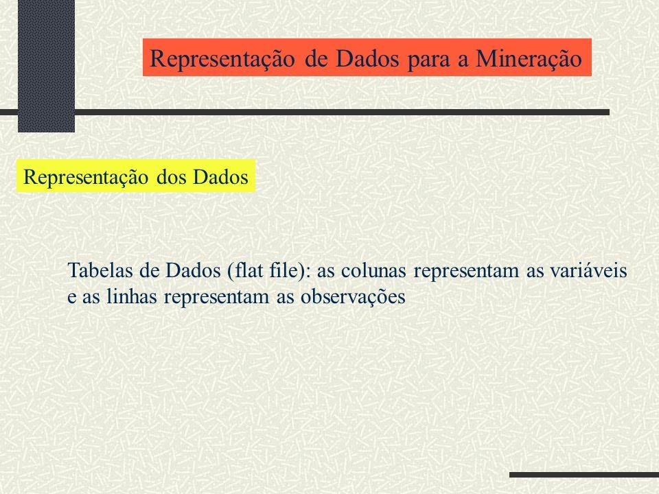 Representação de Dados para a Mineração