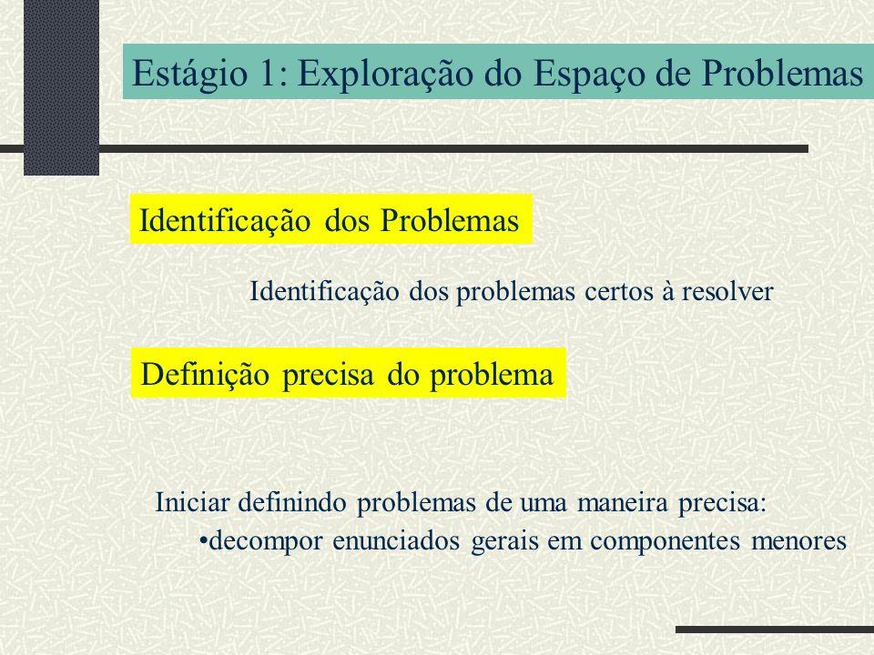 Estágio 1: Exploração do Espaço de Problemas