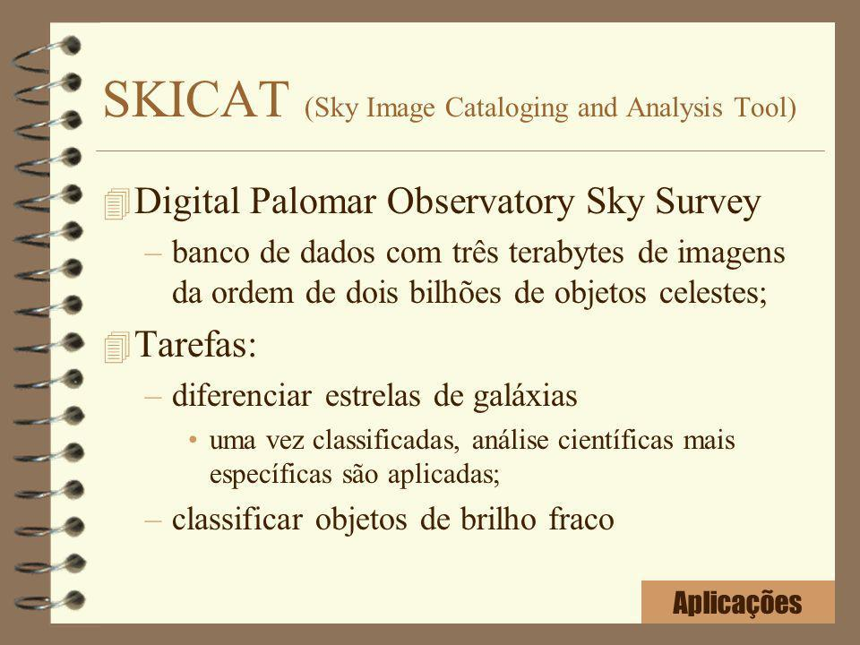 SKICAT (Sky Image Cataloging and Analysis Tool)