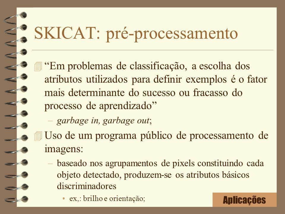 SKICAT: pré-processamento
