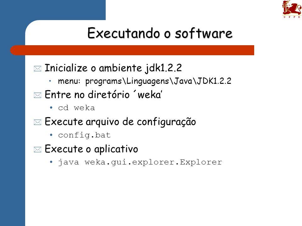 Executando o software Inicialize o ambiente jdk1.2.2
