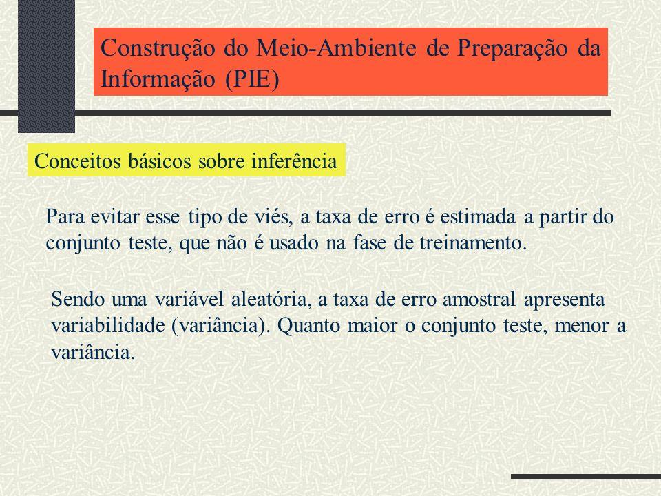 Construção do Meio-Ambiente de Preparação da Informação (PIE)