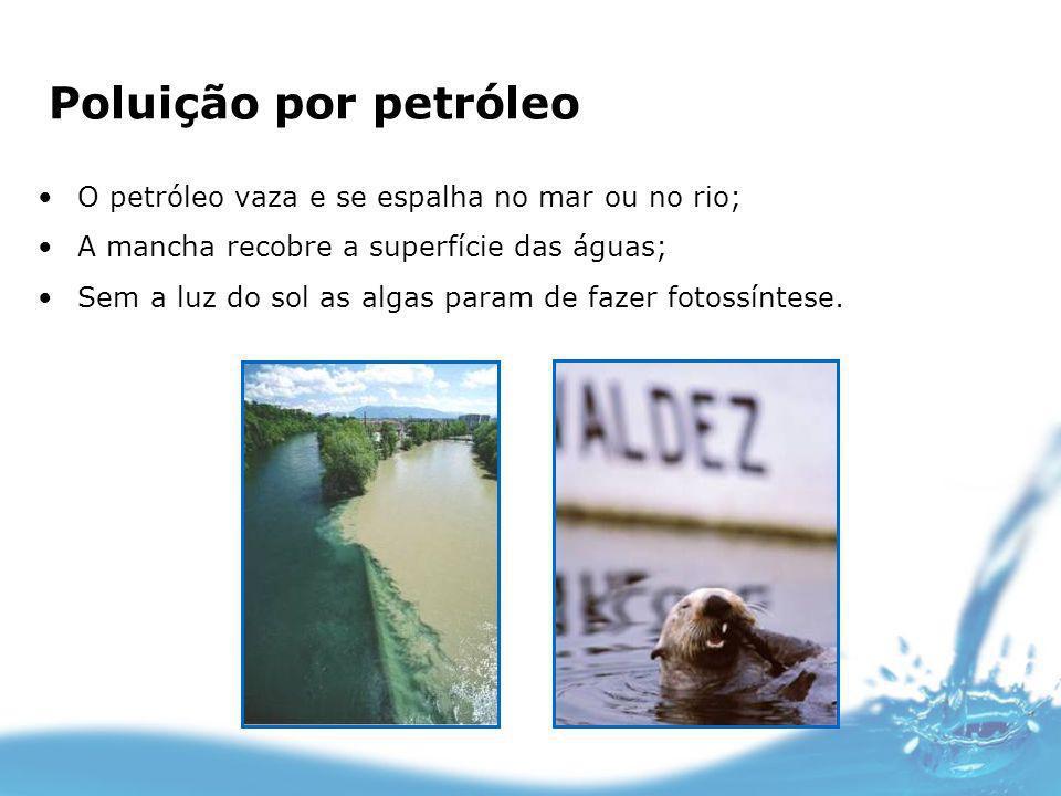 Poluição por petróleo O petróleo vaza e se espalha no mar ou no rio;