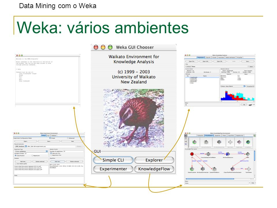 Weka: vários ambientes