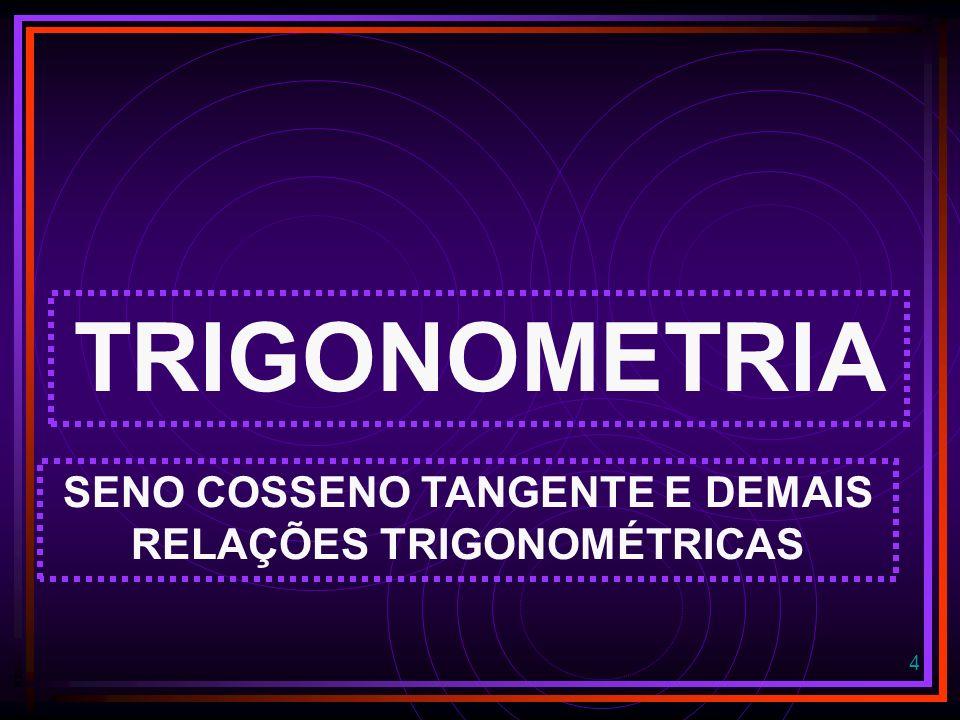 SENO COSSENO TANGENTE E DEMAIS RELAÇÕES TRIGONOMÉTRICAS