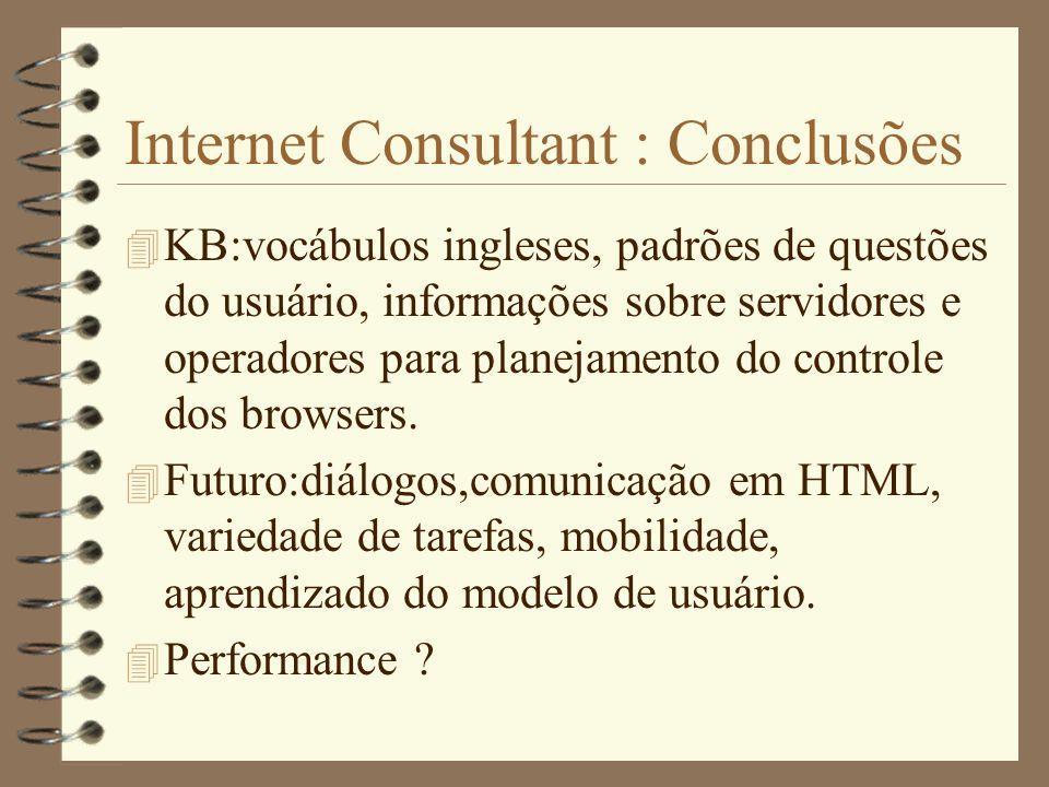 Internet Consultant : Conclusões
