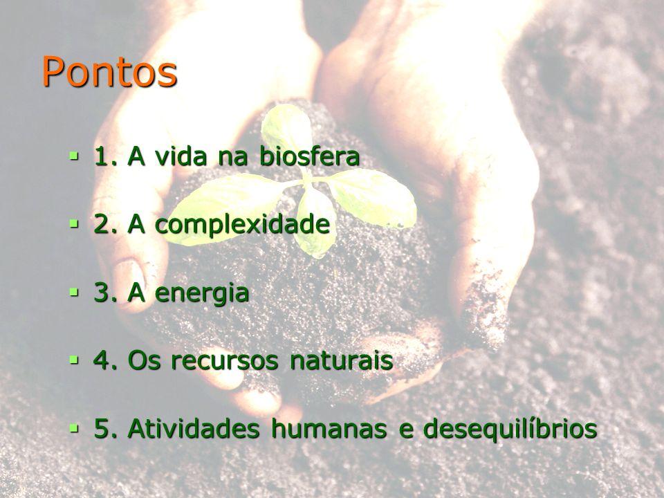 Pontos 1. A vida na biosfera 2. A complexidade 3. A energia