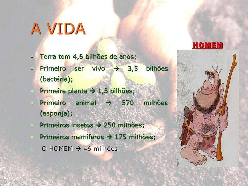 A VIDA HOMEM Terra tem 4,6 bilhões de anos;