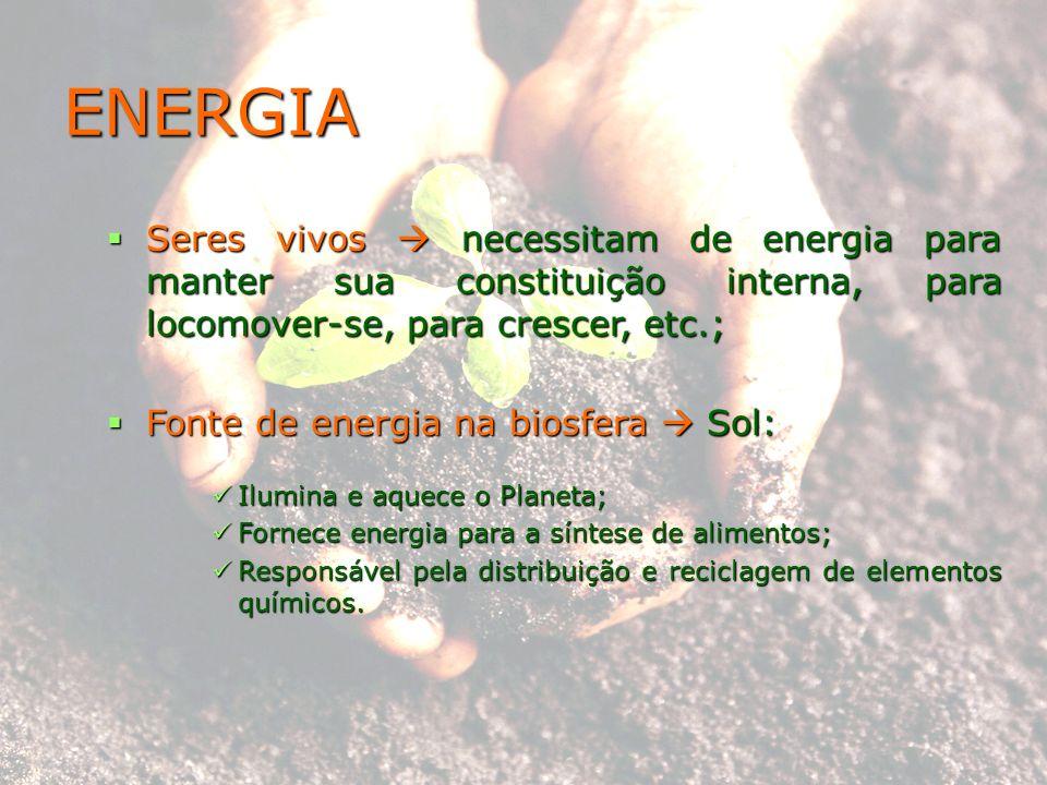 ENERGIA Seres vivos  necessitam de energia para manter sua constituição interna, para locomover-se, para crescer, etc.;
