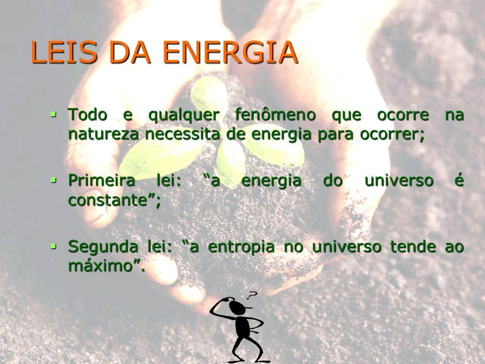 LEIS DA ENERGIA Todo e qualquer fenômeno que ocorre na natureza necessita de energia para ocorrer;