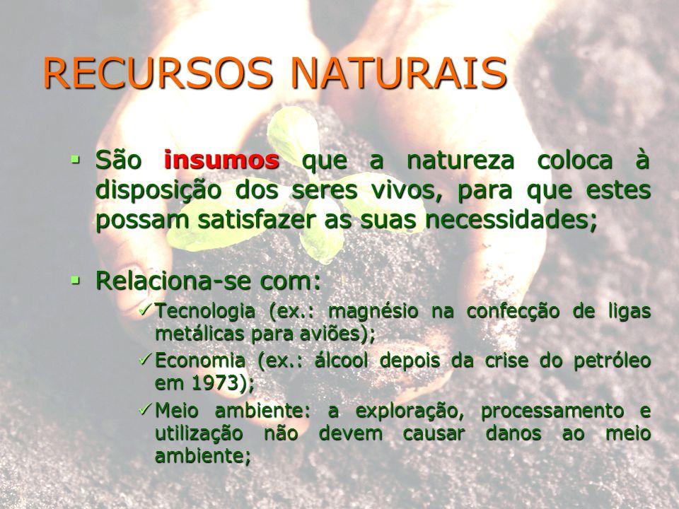 RECURSOS NATURAIS São insumos que a natureza coloca à disposição dos seres vivos, para que estes possam satisfazer as suas necessidades;