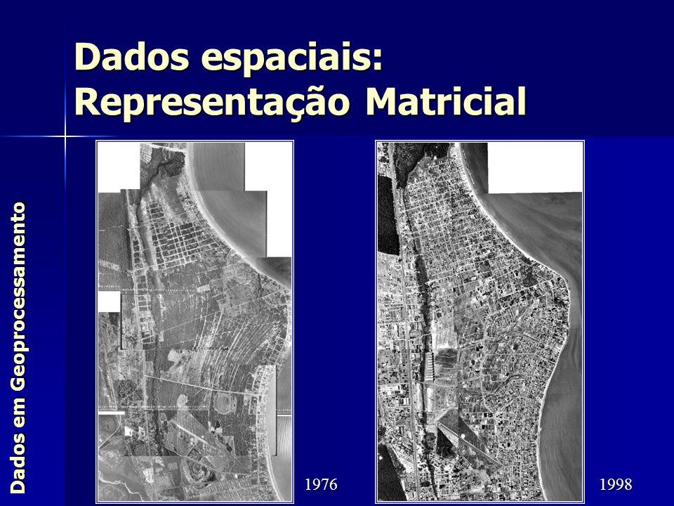 Dados espaciais: Representação Matricial