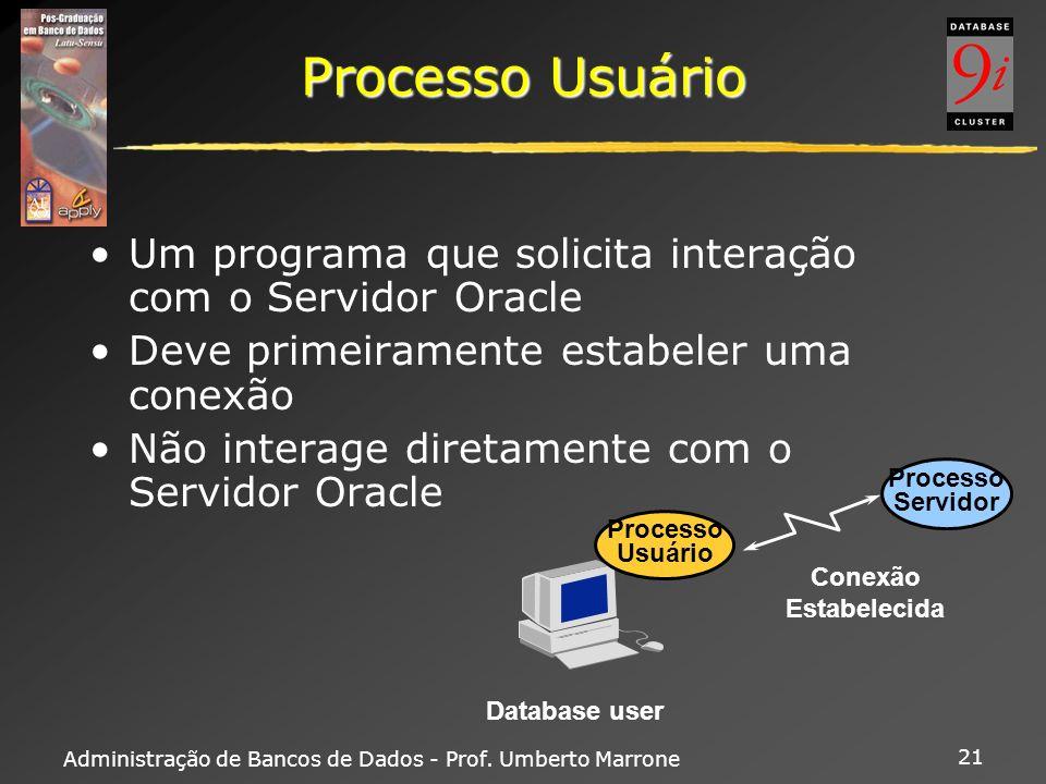 Processo Usuário Um programa que solicita interação com o Servidor Oracle. Deve primeiramente estabeler uma conexão.