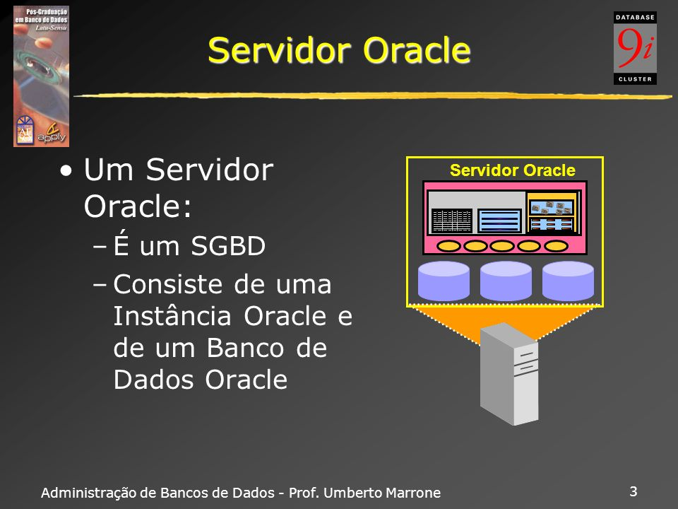 Servidor Oracle Um Servidor Oracle: É um SGBD