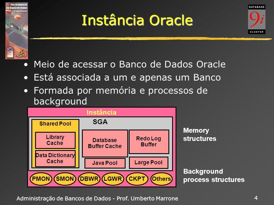 Instância Oracle Meio de acessar o Banco de Dados Oracle