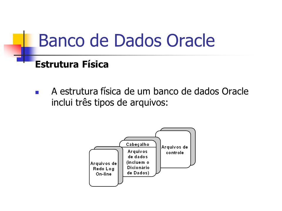 Banco de Dados Oracle Estrutura Física