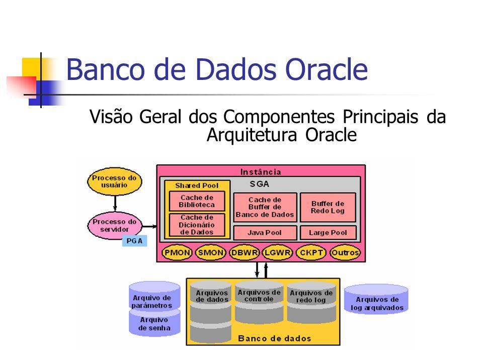 Visão Geral dos Componentes Principais da Arquitetura Oracle