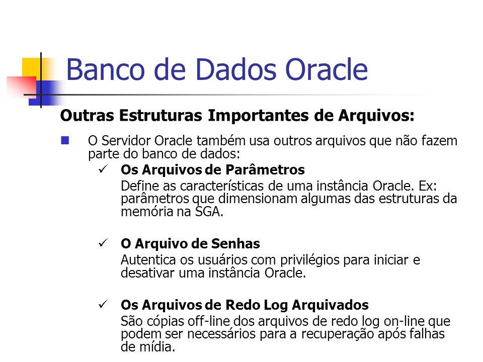 Banco de Dados Oracle Outras Estruturas Importantes de Arquivos: