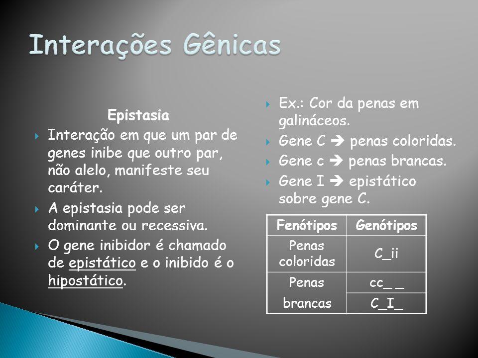 Interações Gênicas Ex.: Cor da penas em galináceos. Epistasia